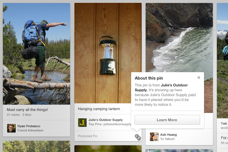 promoted pins pinterest