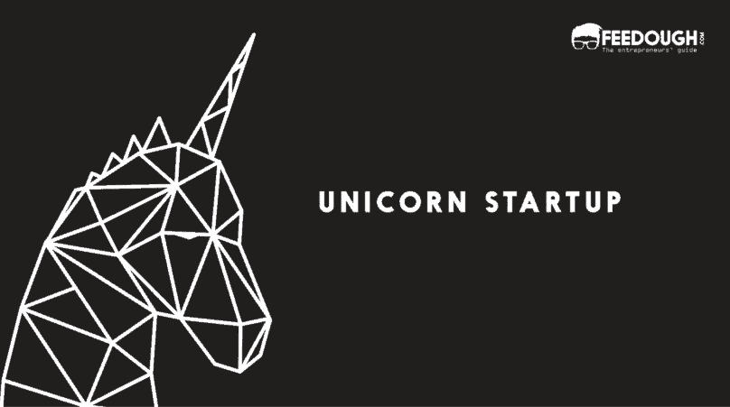 UNICORN STARTUP COMPANY