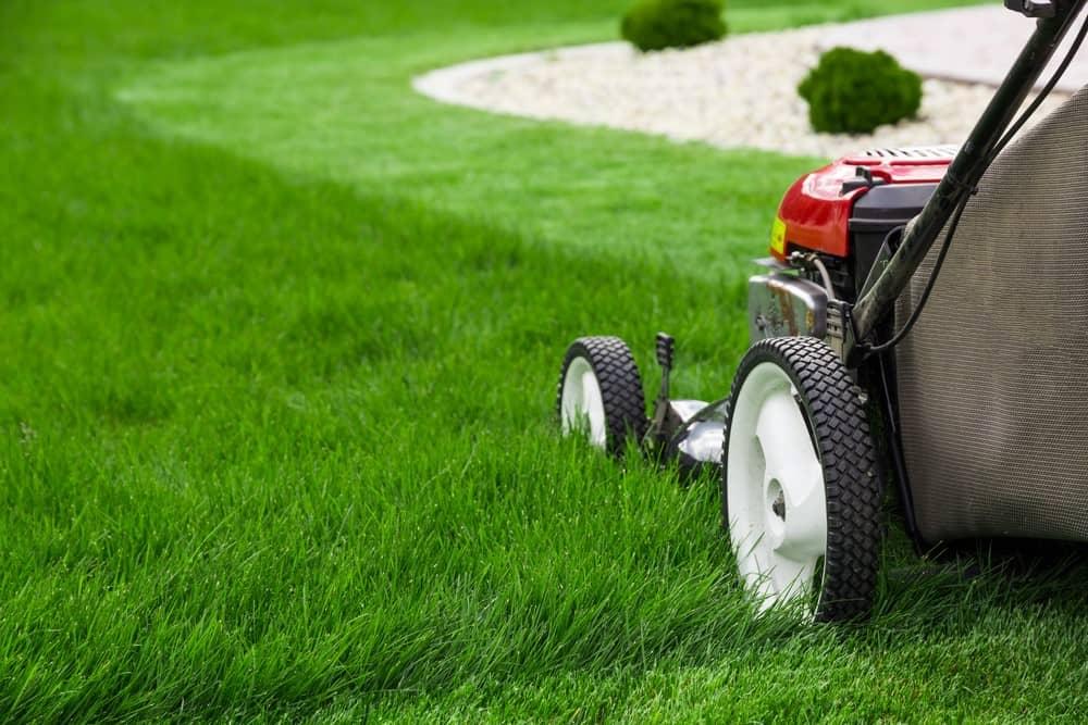 greensocks lawn movers