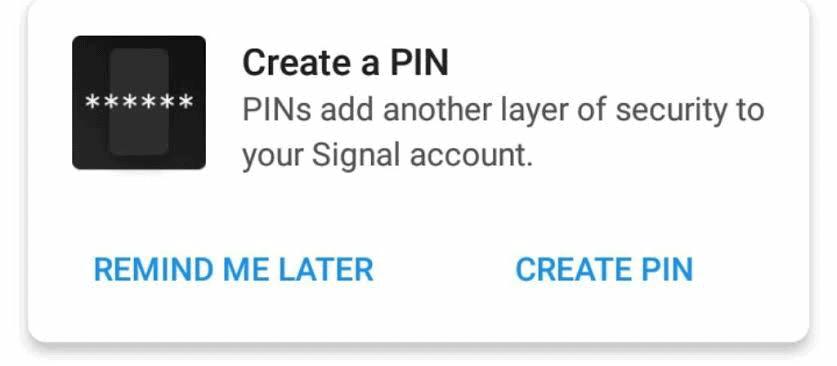 signal pin security