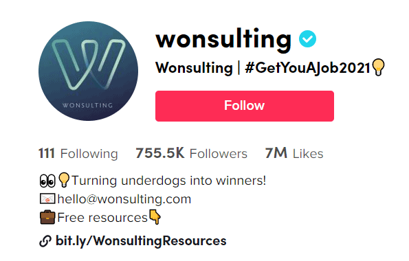Wonsulting - best business tiktoker to help you get a job