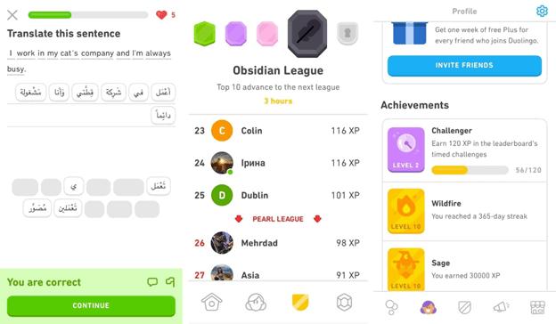 Duolingo startup story